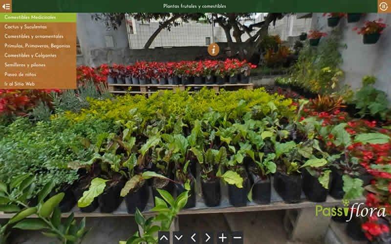 Tour Virtual 360 Grados Passiflora Vivero
