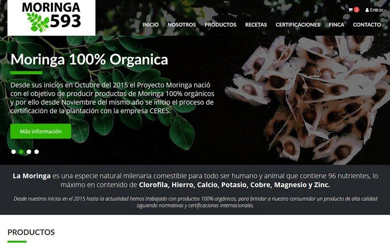Ecommerce Catálogo Moringa593