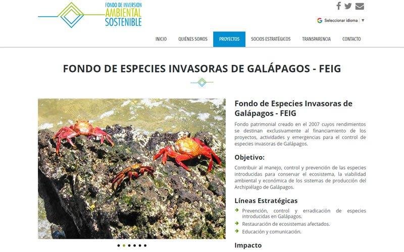 Diseño Web con Portafolio proyectos del Fondo de Inversión Ambiental Sostenible